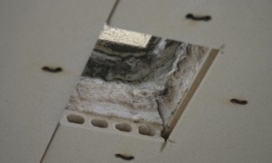 flue hole