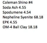 Coleman Shino 4